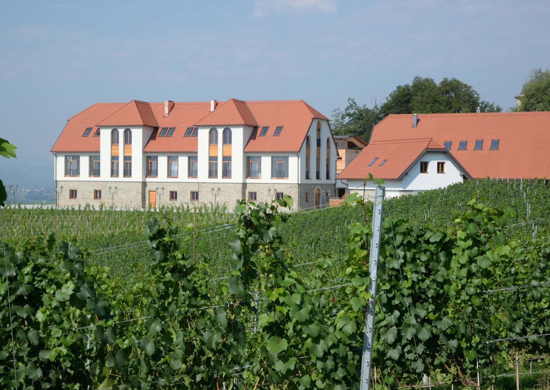 Weingut Burg Taggenbrunn