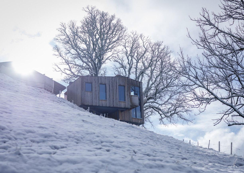 Baumhaussuite Taxhof