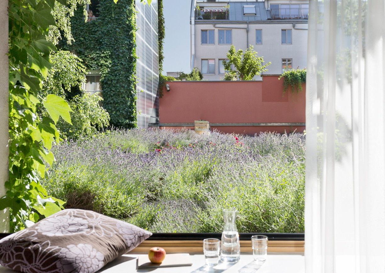Boutiquehotel Stadthalle grüner Balkon Wien
