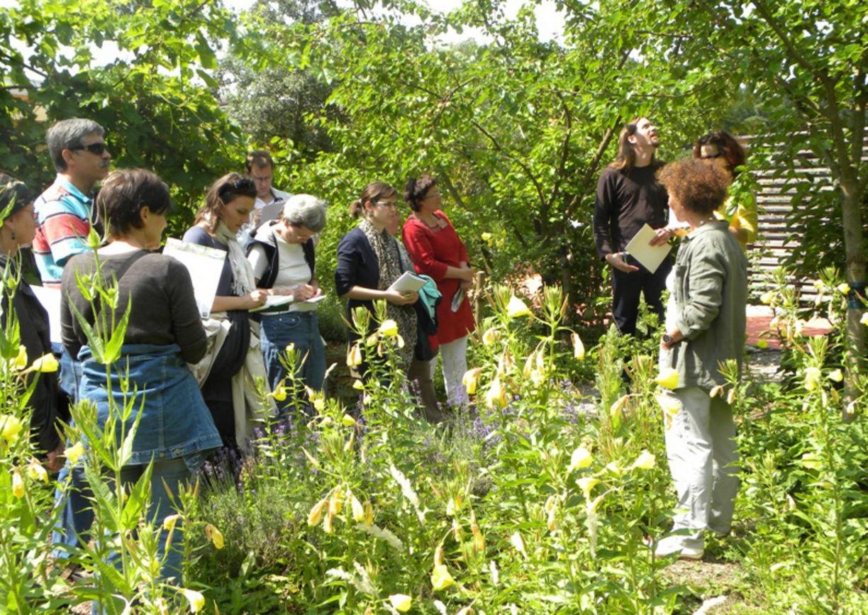 Gartenbesitzer Einblick Grünoasen