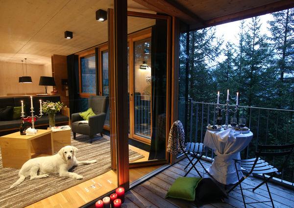 Gradonna Mountain Resort Hotel Osttirol Kals Hund Chalet