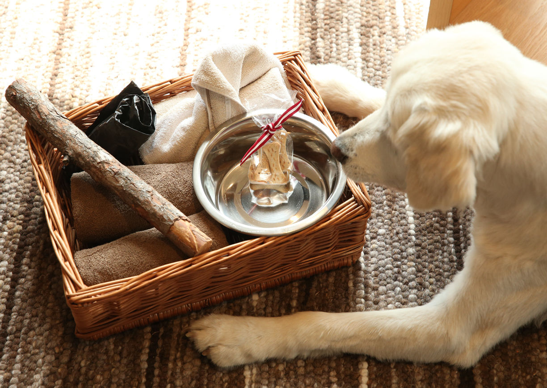 Gradonna Mountain Resort Hotel Osttirol Kals Hund