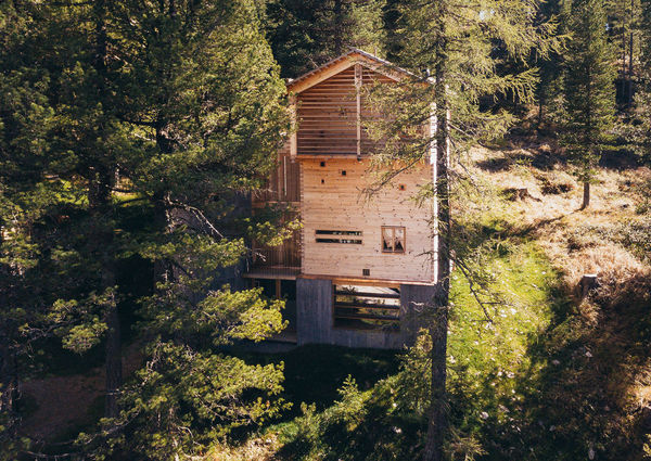 Hollmann am Berg Turracher Höhe Kärnten Chalets Natur Aussenansicht