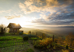 Troadkasten Gipfelhaus Magdalensberg Kärnten Aussicht Wörthersee