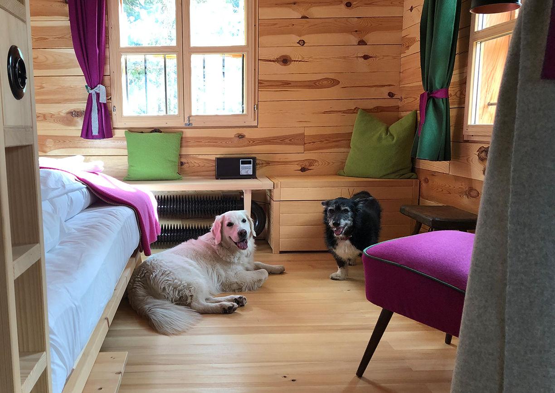Urlaub mit Hund Hollmann am Berg Turracher Höhe Hütte