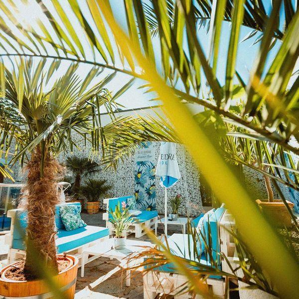 Wien mit Palmen: Belevedere Summer Bay Pop Up