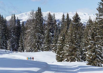 Winterwanderdorf Kartitsch Osttirol Wandern Winter Natur