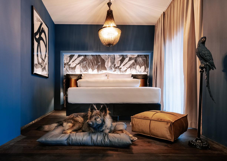 Aiola Living Graz Hotel Zimmer