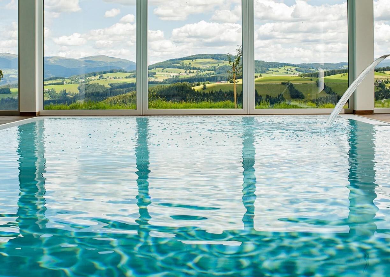 Der Almblick Hotel Steiermark Joglland Spa Wellness Pool Aussicht
